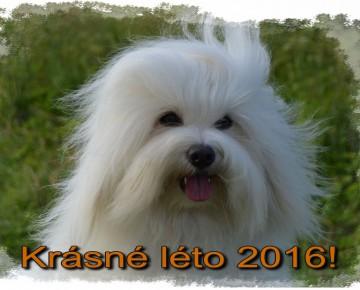 krasne_leto